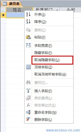在 Access 2010 中如何隐藏数据表中的列?_正解网